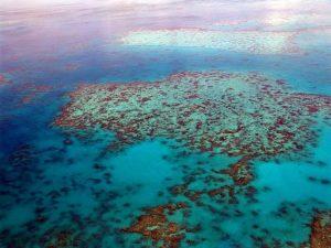 австралия бариерен риф