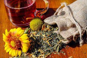 Здравословно изчистване на организма с помощта на Дафинов лист