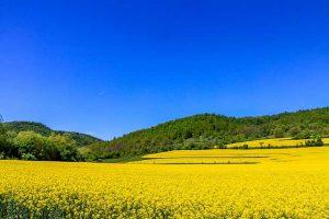 Магията на Родопите – три селца по-разкошни и от приказка