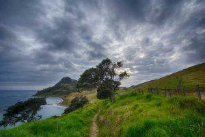 Чудесата на Нова Зеландия