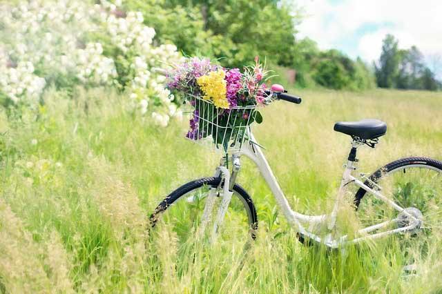 5 здравословни идеи за движение през пролетта
