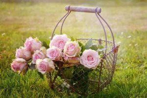 rozi-ot-kazanluk
