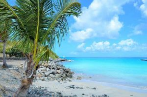 karibsko more v karibite