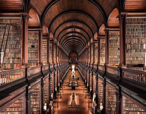 biblioteka-knigi